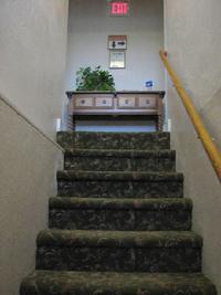 Small hotel for Small room karen zoid lyrics